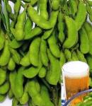 soybeans11_130×150.JPG