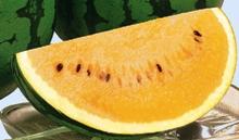 watermelon3_220×129.JPG
