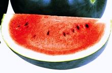 watermelon5_220×144.JPG